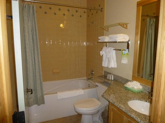 Juniper Springs Resort: Bathroom 1