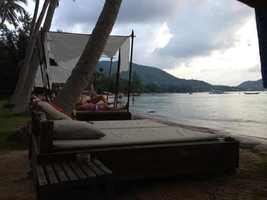 Koh Tao Cabana: sun beds