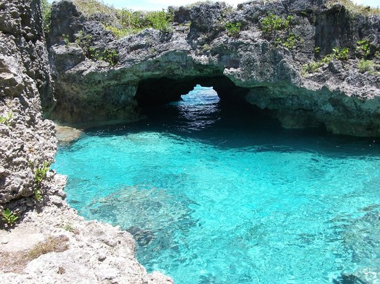 Limu Pools Niue South Pacific Top Tips Before You Go