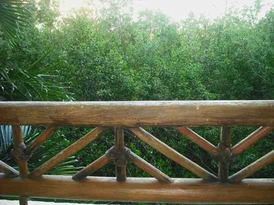 كاتالونيا رويال تولوم (للكبار فقط): veiw from balcony 