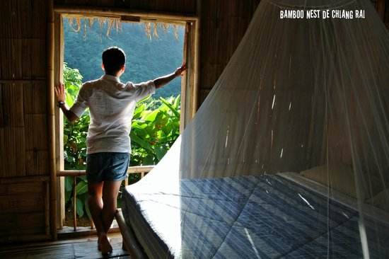 Bamboo Nest de Chiang Rai: Open the window