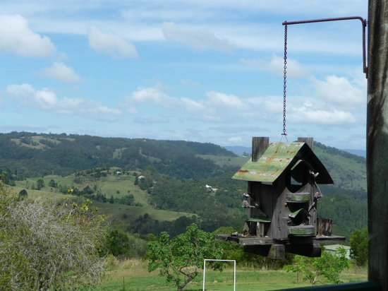 Maleny Hideaway: View from the Varendah up stairs
