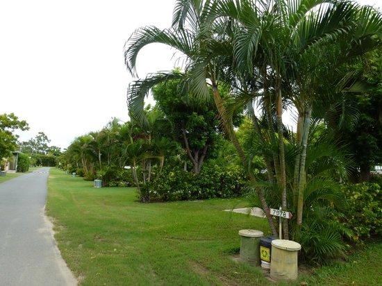 Queens Beach Tourist Village: the gorgeous gardens