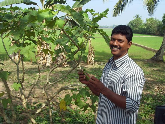 Green Palm Homes: Binni who leads the morning walk
