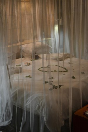 Elephant Plains Game Lodge: Manyeleti Suite - Honeymoon Treat