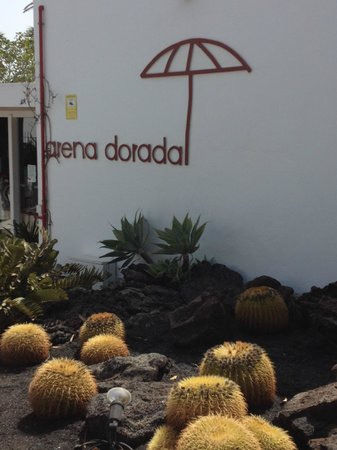 Arena Dorada Apartments: Garden outside reception