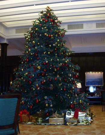 Baur au Lac: Christmas tree in the lounge