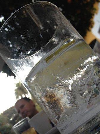 Modesto : Y al final un Gin Tonic
