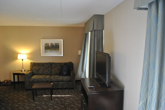 Hampton Inn & Suites by Hilton Barrie : Part of living area