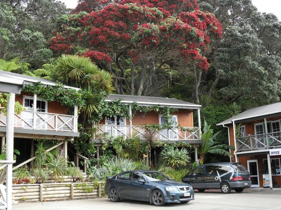 Anchor Lodge Coromandel: Cabin up among the rainforest hill, fantastic!!