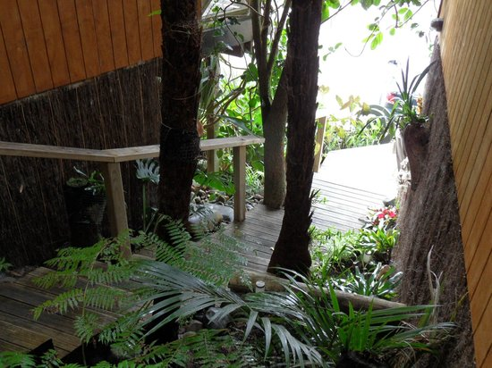 Anchor Lodge Coromandel: Stairway up to our room with orchids to view on the way up.