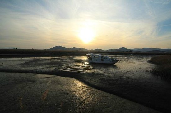 Suncheon Bay Cyber Ecological Park: Tidal flats