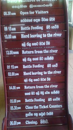 Pinnawala Elephant Orphanage: Time table