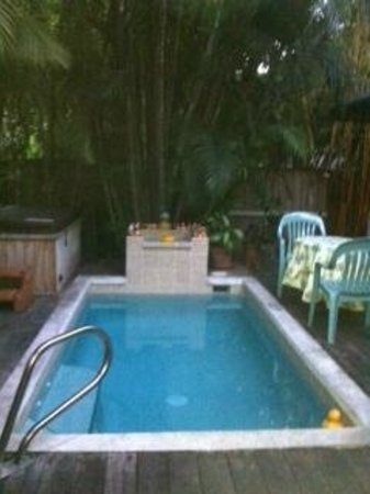 Knowles House B&B: Pool and Sauna