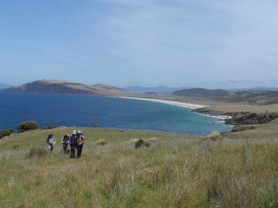 Tasmanië, Australië: View of the coast line that we walked - Plain Place Beach in distance.