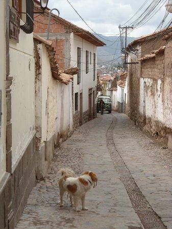 Casa de Mama Cusco Recoleta: Calle del hostal