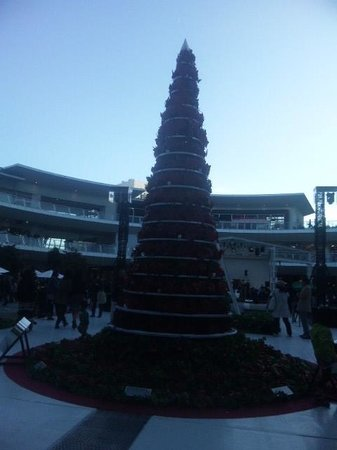 Lazona Kawasaki Plaza: クリスマスツリー