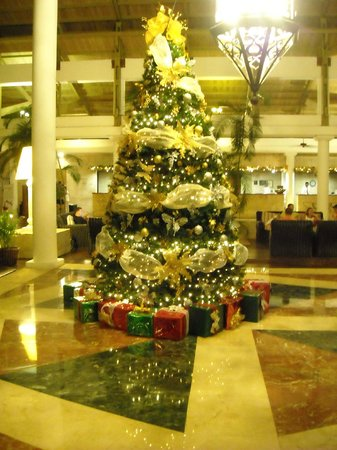 Catalonia Bavaro Beach, Casino & Golf Resort: Ready for Xmas