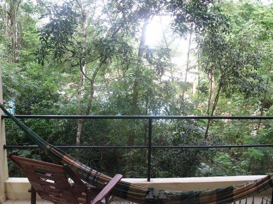 Sol Cataratas Hotel: vista desde la habitación, detrás de los árboles la piscina