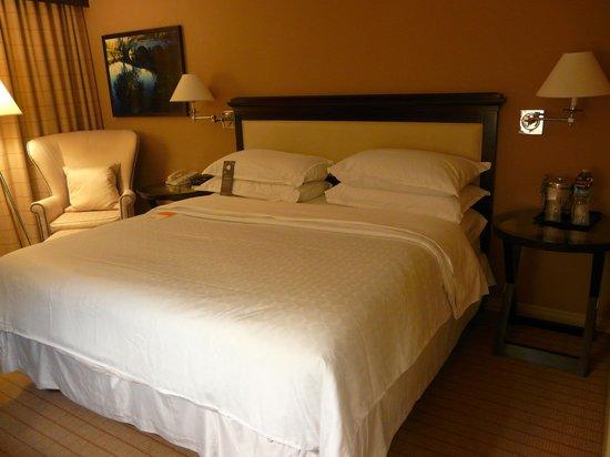 Sheraton College Park North Hotel: Habitación hotel