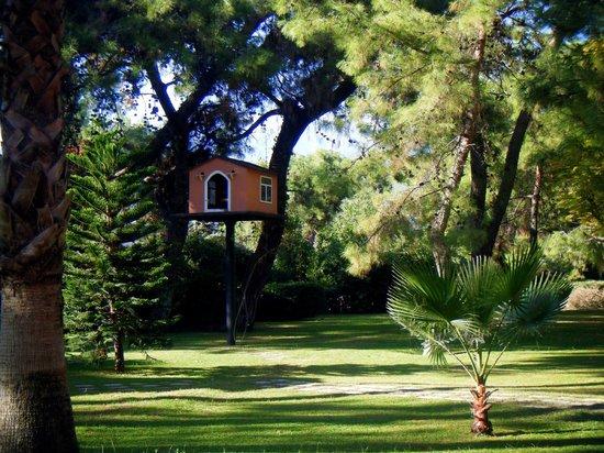Fantasia Hotel De Luxe: Hotel garden