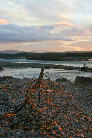 WDC Scottish Dolphin Centre: Spey Bay on a winter's evening - magical