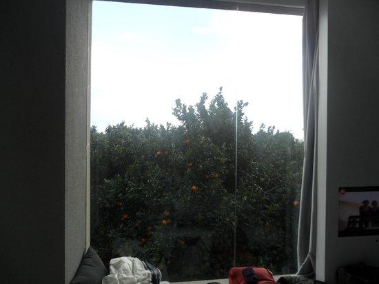 Zash Country Boutique Hotel: vetrata della camera da letto