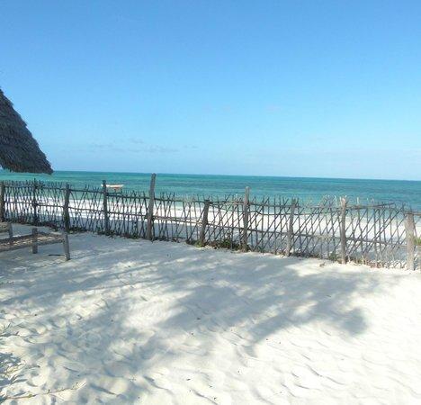 Nuru Beach Resort : Beach view from the Restaurant