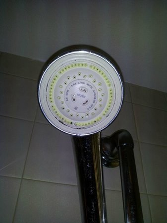 Legacy Vacation Resorts: 2011 Dirty Shower Head