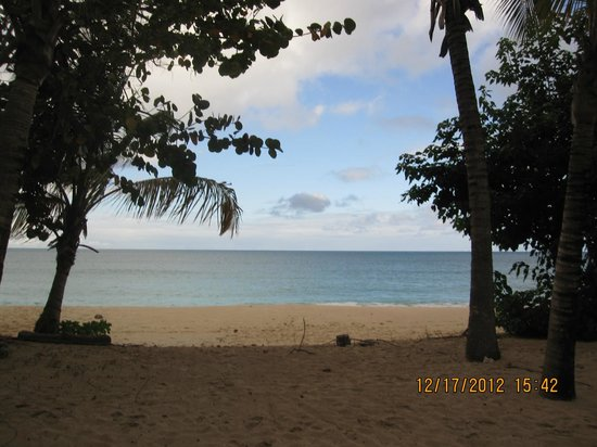 Galley Bay Resort & Spa: Beach view