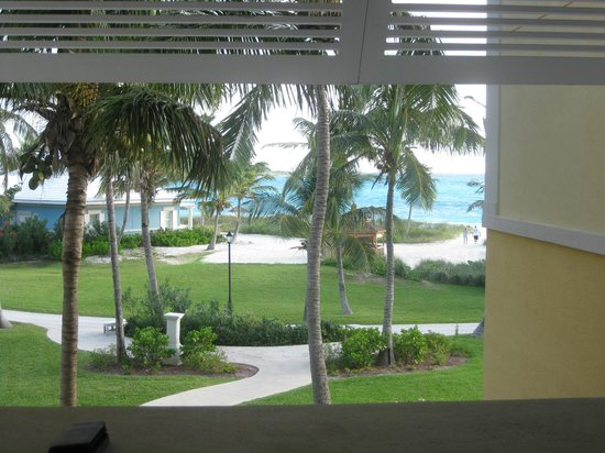 Sandals Emerald Bay Golf, Tennis and Spa Resort: View from one of the back buildings