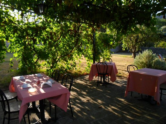 Agriturismo Il Ruscello di Ceraso : Il giardino
