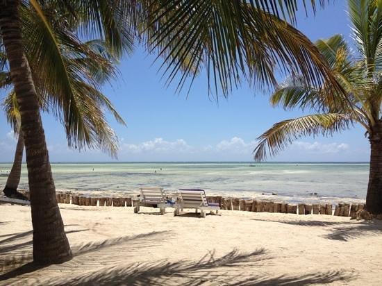 Jacaranda Beach Resort: spiaggia!!