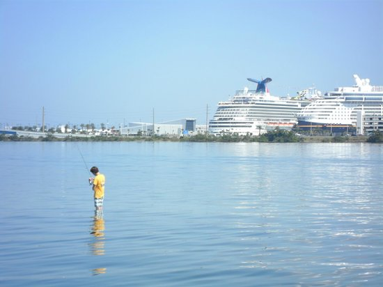 Space Coast River Tours: Disney cruise liners