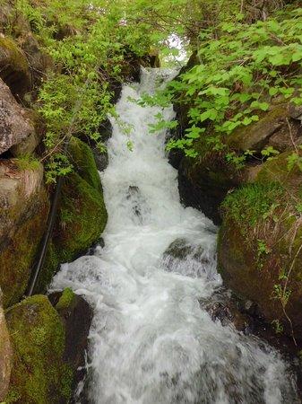 Yokoya Gorge: 乙女滝