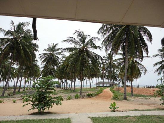 Seaway Hotel: palm garden