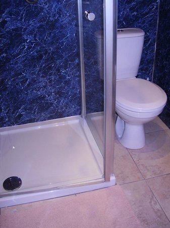 Streonshalh B&B: Un-closeable shower door...