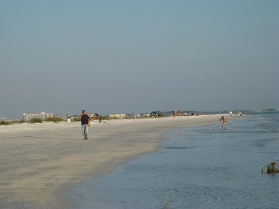 The Capri at Siesta: Siesta Key beach