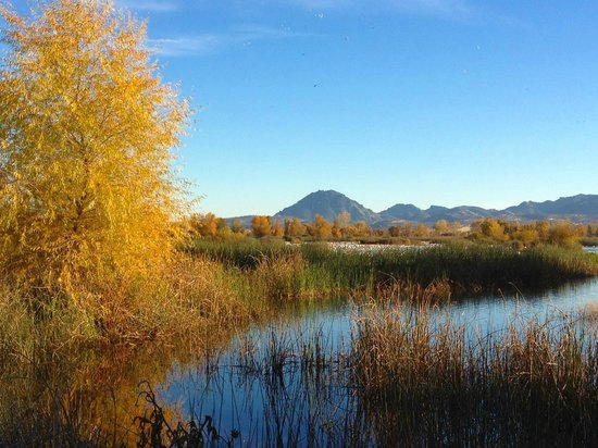 Sacramento National Wildlife Refuge: Fall on the refuge