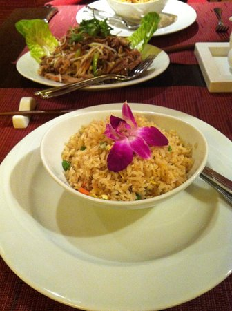 Asian Place : Fried rice and fried duck