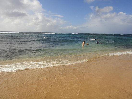 Aloha Kauai Tours: The beach was beautiful and it was easy to get in