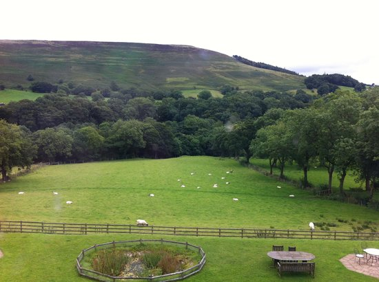 Losehill House Hotel & Spa: The view from our window