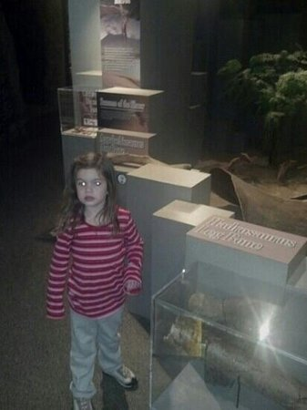 Anniston Museum of Natural History: In the dinosaur exhibit.