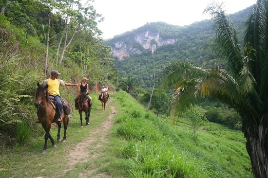 Black Rock Lodge : Horseback Riding up the Macal River Cab