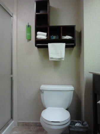 Hampton Inn Philadelphia / Willow Grove : bathroom