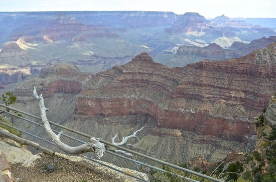 Comfort Inn Near Grand Canyon: Grand Canyon