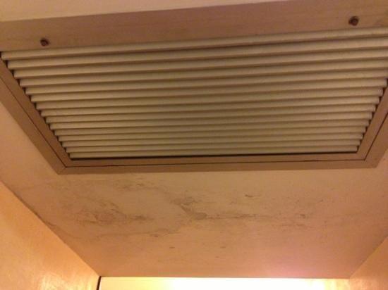Hotel Malaspina: muri con muffa