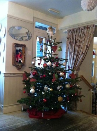 Baldry's Tea Room : looking lovely and festive in Baldrys today!
