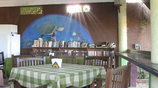 Cafe Sol: Free library