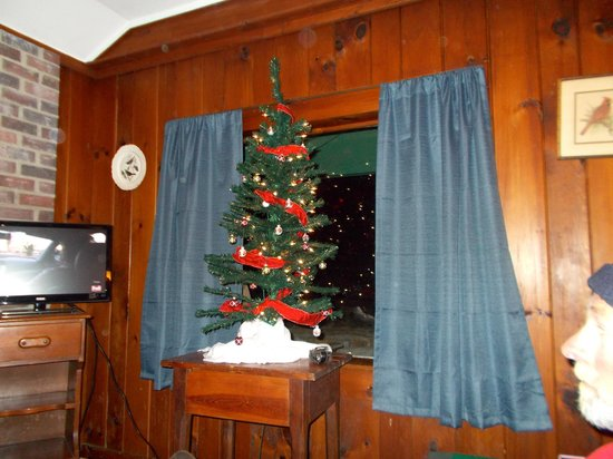 The Pines Cottages: Christmas tree that was waiting on us